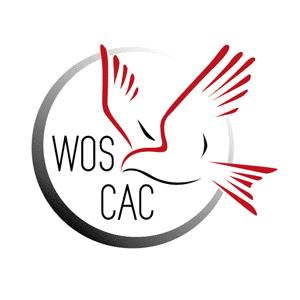 Logo Design WOS